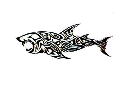 Трайбл эскизы акула