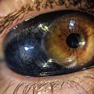 Модный тренд: тату на глазах (50 фото)