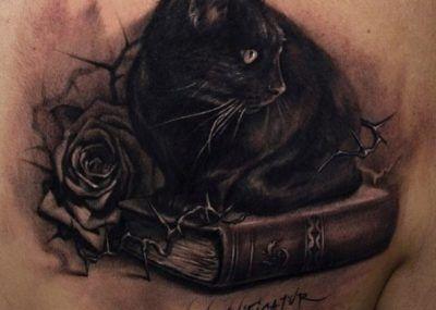 тату кот на книге