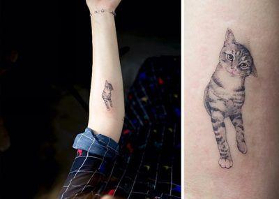 тату кошка на руке