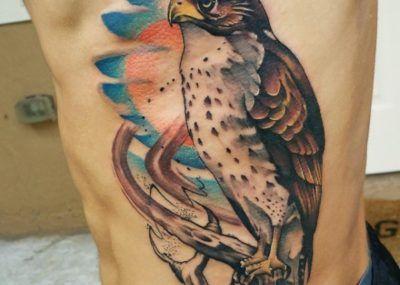 татуировка совы на ребрах