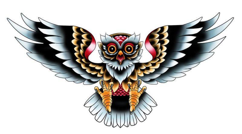 сова цветная эскиз