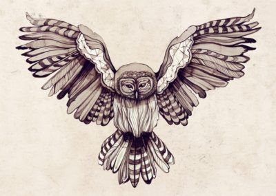 эскизы тату сова с крыльями