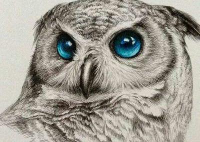 эскизы тату сова глаза