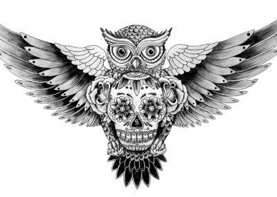 эскизы тату сова с черепом