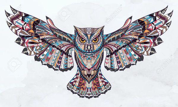 сова цветная