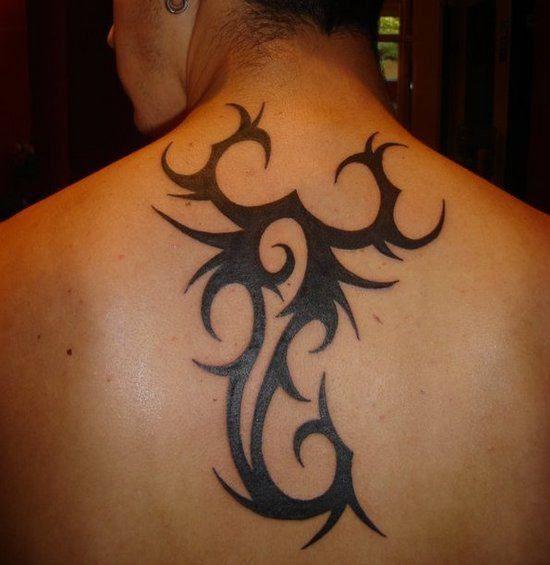tribal zodiac scorpio  Signthe Scorpioand more
