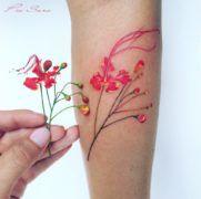 Акварельная ботаника крымского тату-мастера Pis Saro (65 фото)