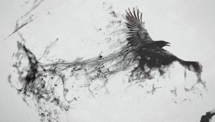ravens voron