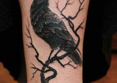 тату ворон на дереве