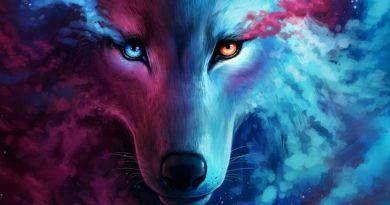 волк эскизы