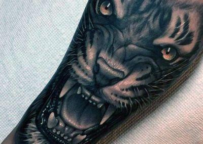 Тату на предплечье тигр