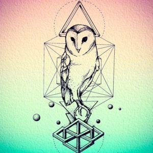 Геометрические татуировки с совой (80 фото)