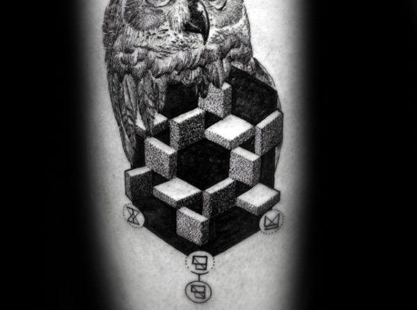 сова геометрическая