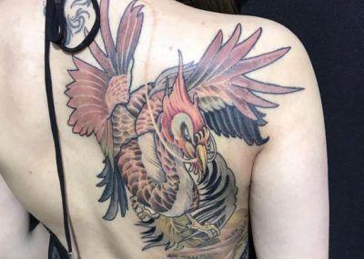 тату феникс на спине женское
