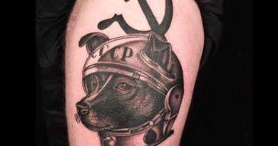 Фото: собака Лайка в татуировках