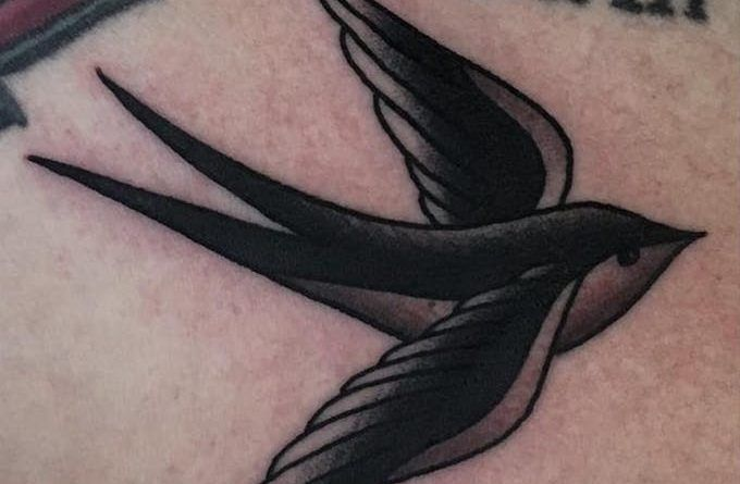 swallow bird ontattoo