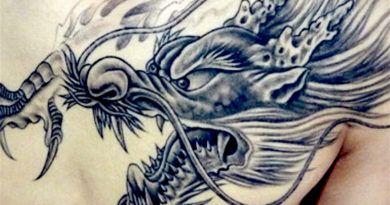 Татуировка Дракон (35 фото)