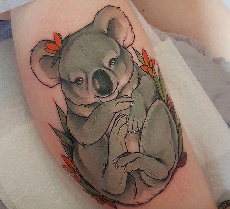 тату животные фото коала