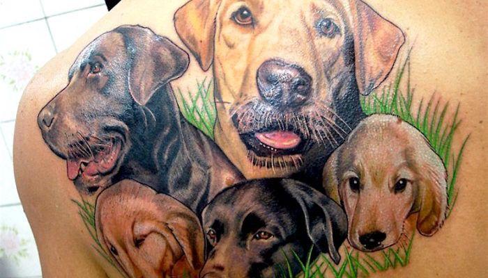 Собаки: идеи и дизайн татуировок (80 фото)