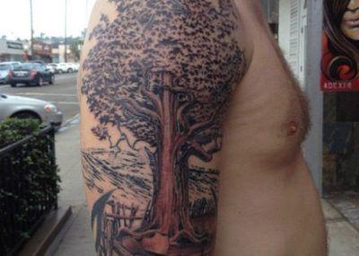 тату дуб на плече