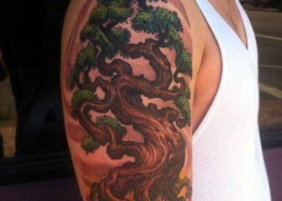 татуировка дуб на плече