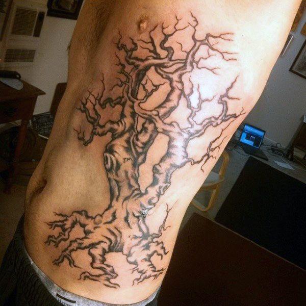 oak tatu dub foto