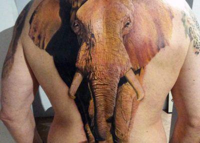 тату слон рисунок
