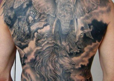 тату слон на спине