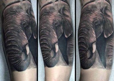 тату слон рукав