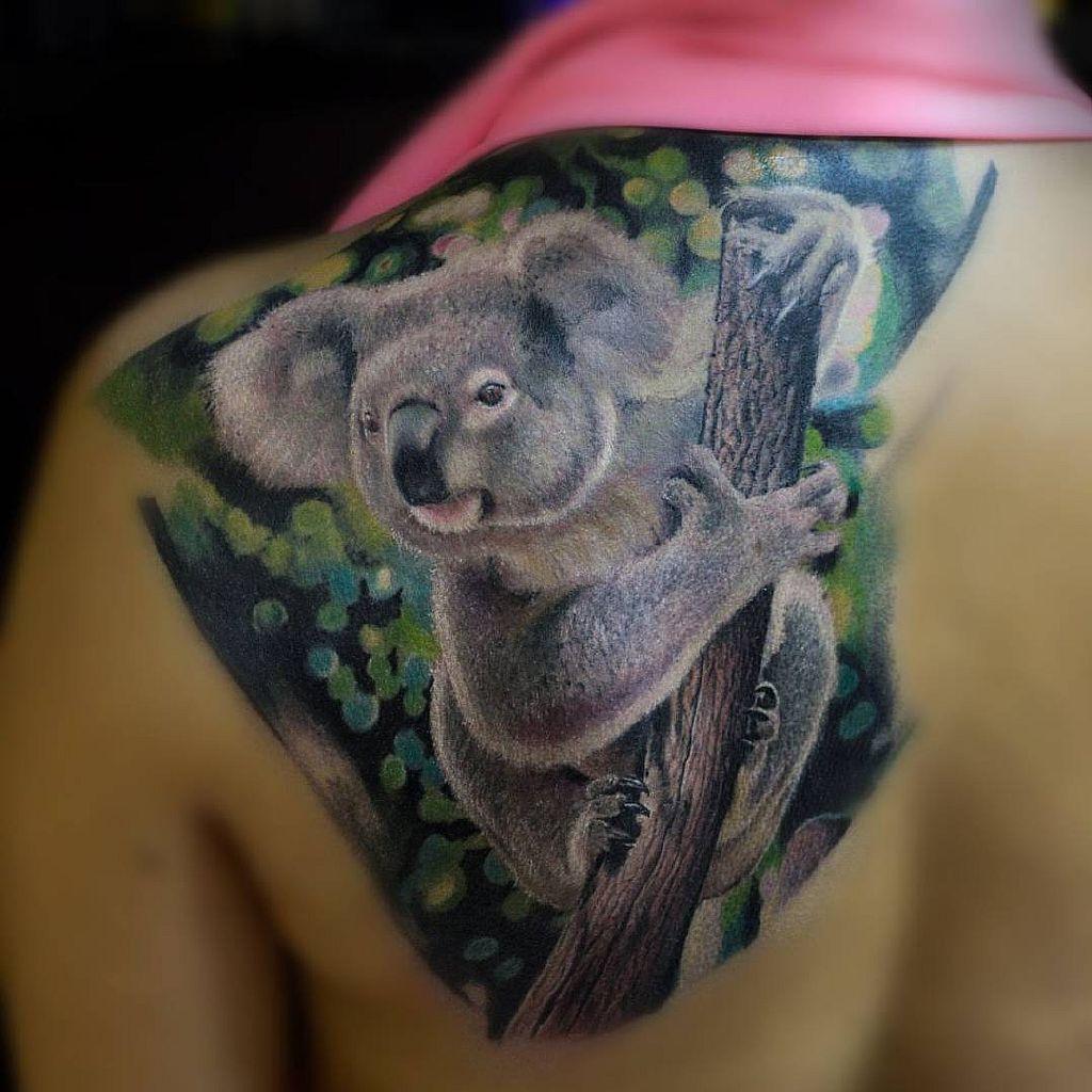 тату коала на плече
