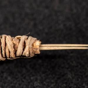Был найден самый древний инструмент для татуировки