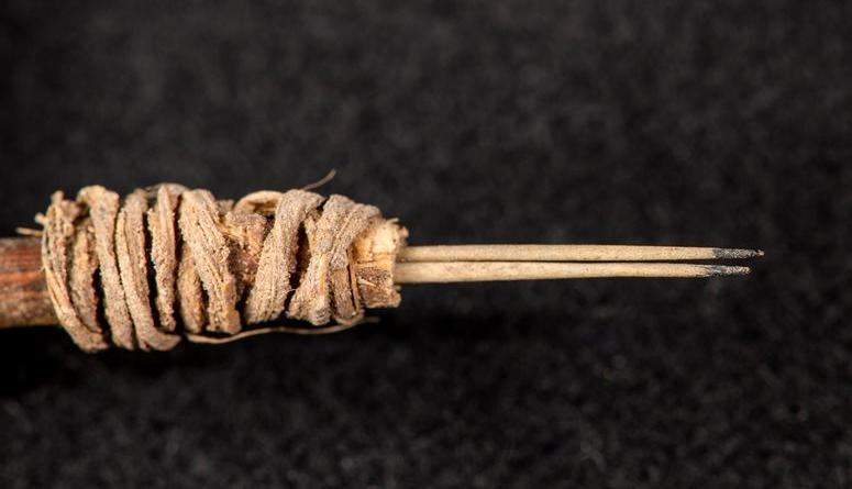 найден самый древний инструмент для татуировки