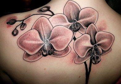 Что означает орхидея на теле