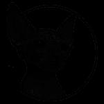 Кот. Эскизы тату (120 фото)