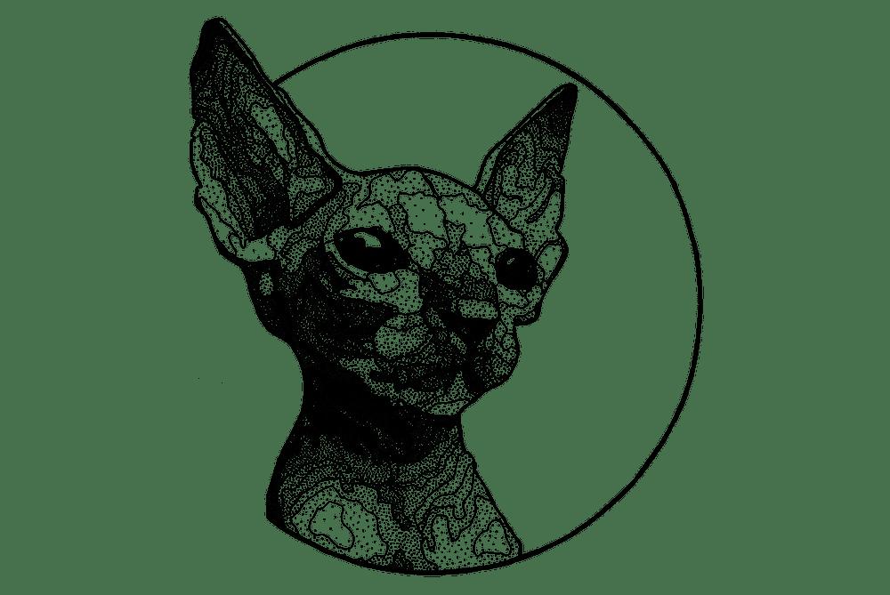 Кот. Эскизы тату (120 фото)0